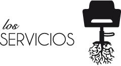 cabecera_servicios
